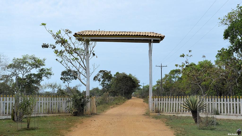 Tor über einen Schotterweg mit weißem Holzzaun
